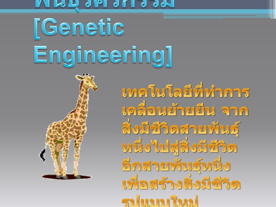 พันธุวิศวกรรม [Genetic Engineering]